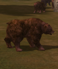 Cursed Bear.png