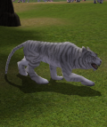 White Tiger.png
