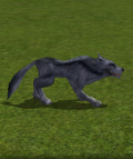 Alpha Blue Wolf.png